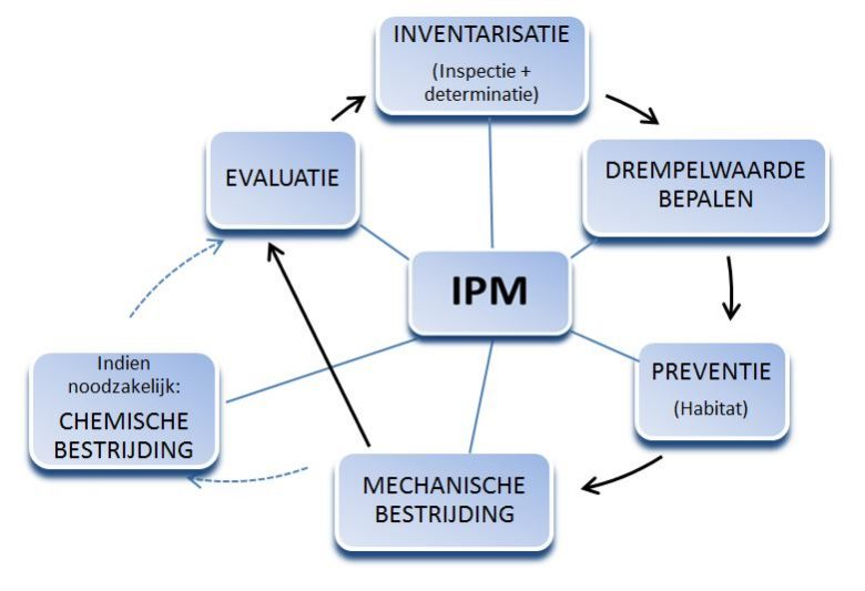 IPM continu proces